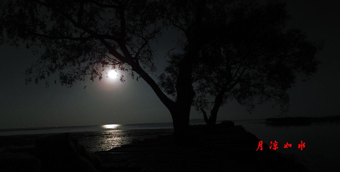 明月湾古码头赏月 - 米多饭香工作室 - 摄影:JamieWang