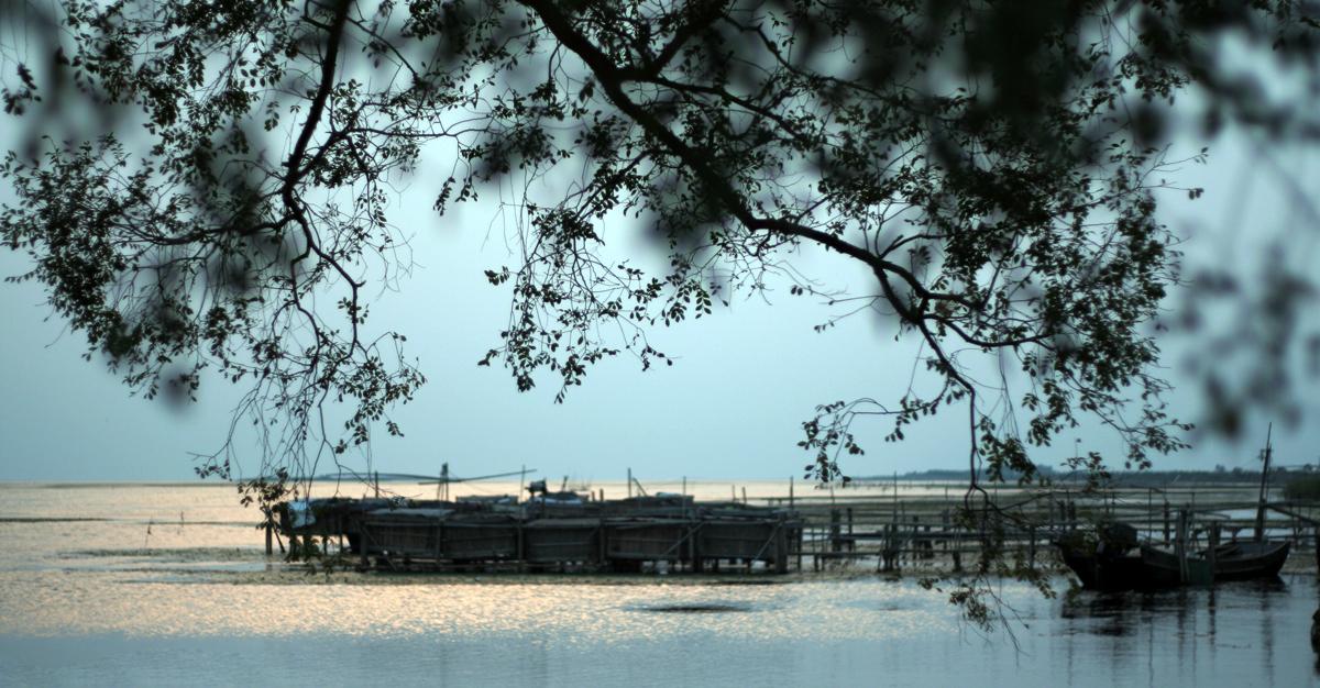 太湖畔迤逦的风光 - 米多饭香工作室 - 摄影:JamieWang